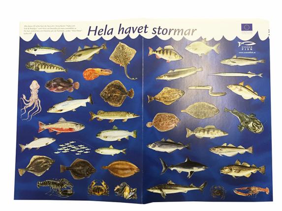 hela-havet-stormar